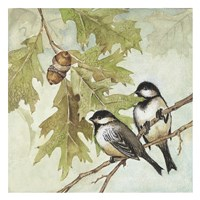 Birds I Fine Art Print