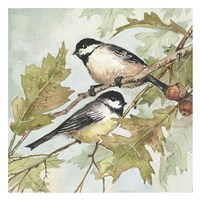 Birds II Fine Art Print