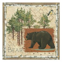 Black Bear Fine Art Print
