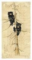 Black Bears Cubs Fine Art Print