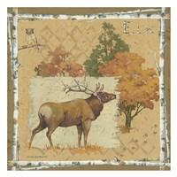 Deer / Elk Fine Art Print