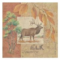 Deer / Elk Country Fine Art Print