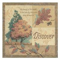 Discover Fine Art Print