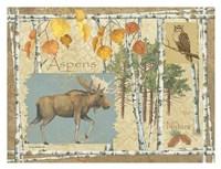 Moose and Aspens Fine Art Print