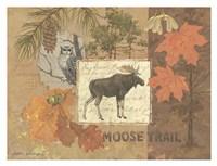 Moose Trail Fine Art Print