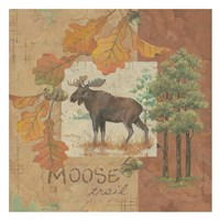 Moose Trail I Fine Art Print