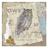 Owl Hoot Fine Art Print