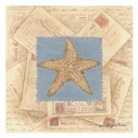 Starfish Postcard I Fine Art Print
