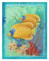 Tropical Fish II (detail) Fine Art Print