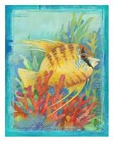 Tropical Fish IV Fine Art Print