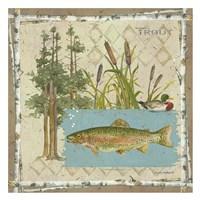 Trout Postcard Fine Art Print