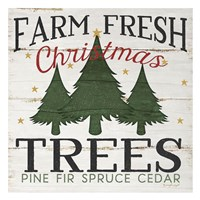 Farm Fresh Christmas Trees Fine Art Print