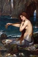 A Mermaid Framed Print