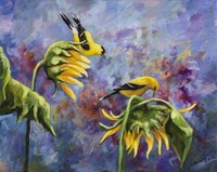 Finches with Sunflowers Fine Art Print