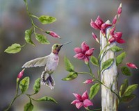 Hummingbird with Flowers Fine Art Print
