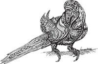 Birdy Fine Art Print