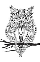 Mean Owl Fine Art Print