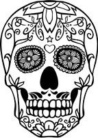 Skull 20 Fine Art Print