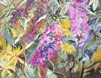 Allans Garden Fine Art Print