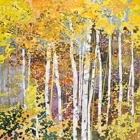 Autumn Birches III Fine Art Print