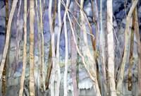 Mystery Of Trees II Fine Art Print