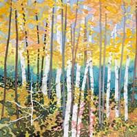 Mystery Of Trees V Fine Art Print