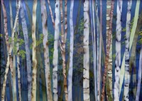 Mystery Of Trees-Birches Fine Art Print