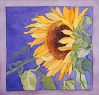 Sunflower I Fine Art Print