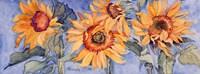 Sunflowers VI Fine Art Print