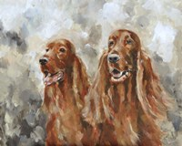 Two Irish Setters Fine Art Print