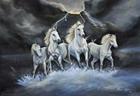 Thundering Horses Fine Art Print