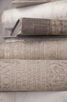 Books Cameo II Fine Art Print