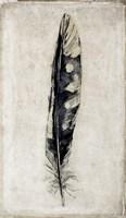 Feather 3 Fine Art Print