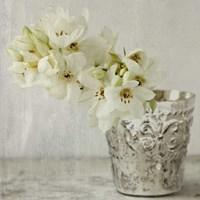 Silver Vase Fine Art Print