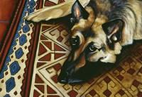 Wolfie Fine Art Print