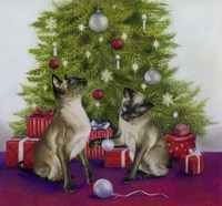 Christmas Siamese Cats Fine Art Print