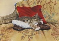 Comfy Slipper Fine Art Print