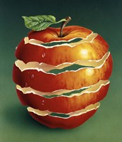 Red Apple Fine Art Print
