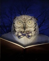 Book Owl Fine Art Print