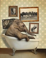 Elephant In Tub Framed Print