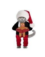 Santa Cat Fine Art Print