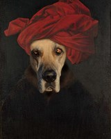 Great Dane Fine Art Print