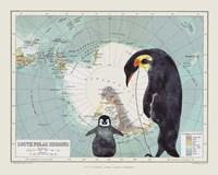 Antartica Fine Art Print