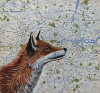 Mr. Fox Fine Art Print
