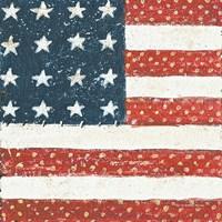 Americana Quilt IV Fine Art Print