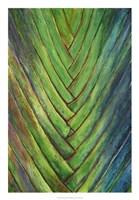 Tropical Crop I Fine Art Print