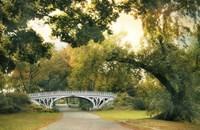 Gothic Bridge Fine Art Print