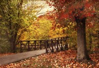 Autumn Footbridge Fine Art Print