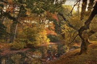 Autumn's Edge Fine Art Print