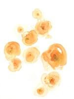 Falling Blossoms II Fine Art Print
